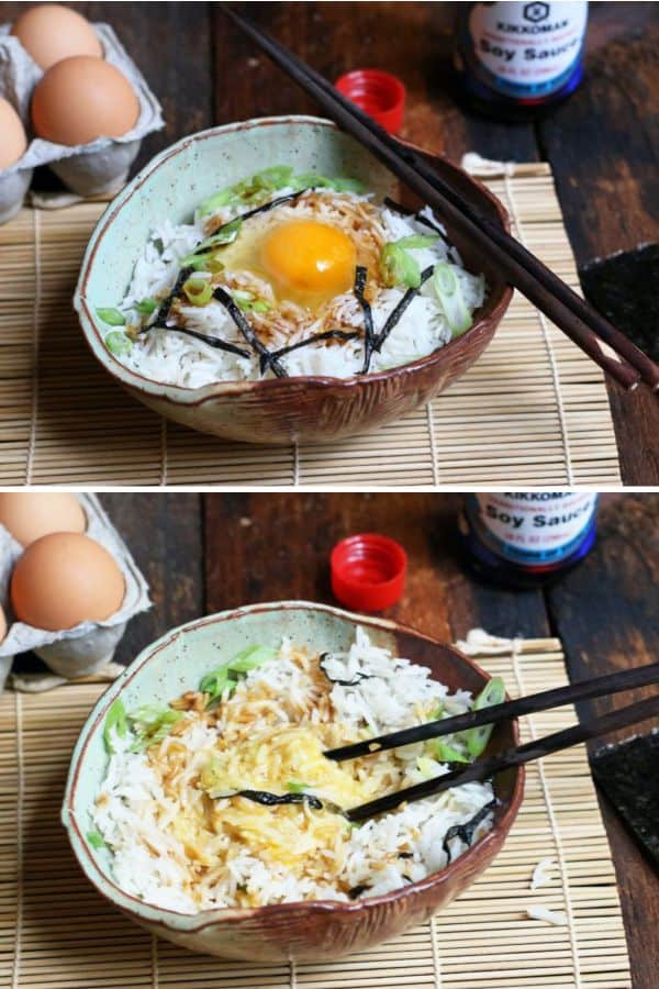 Japanese Rice Bowl with Egg