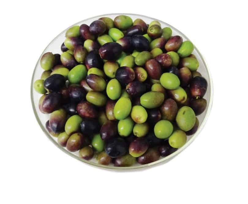 Cordovil Olives