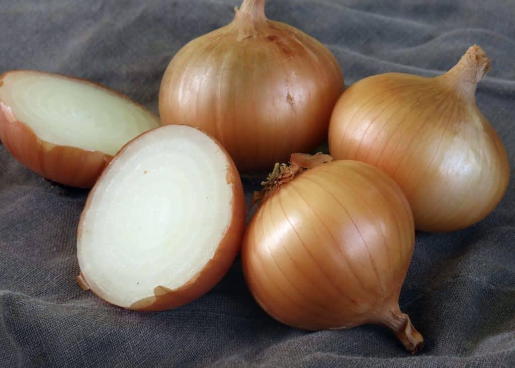 Walla Walla Onions