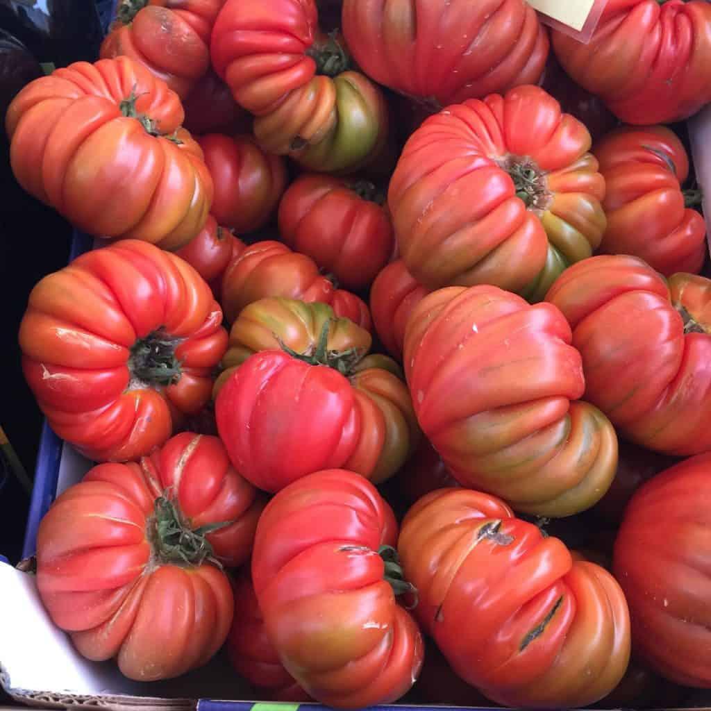 Costoluto Genovese Tomatoes