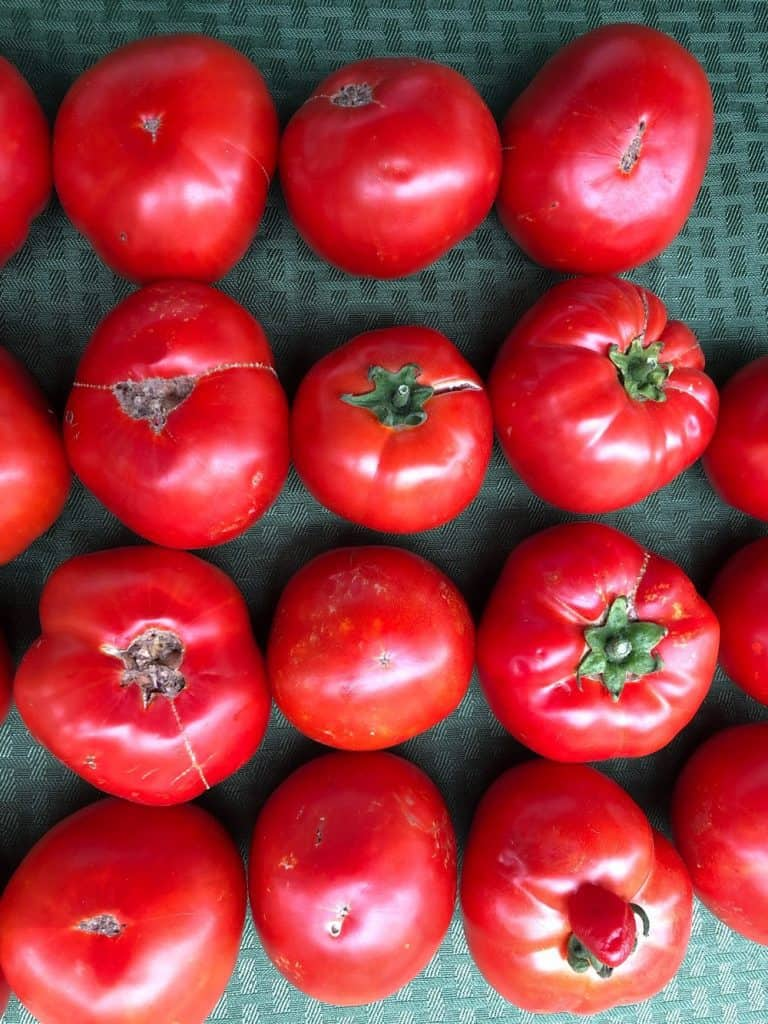 Types of Beefsteak Tomatoes
