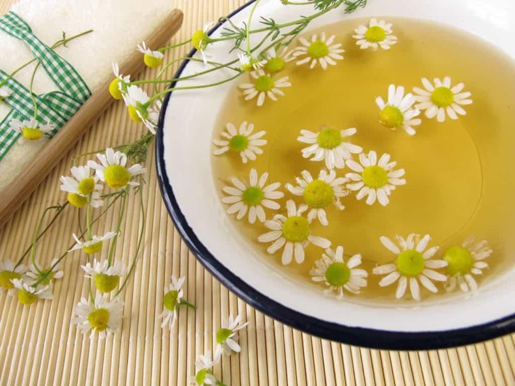 Chamomile Tea Benefits for Health