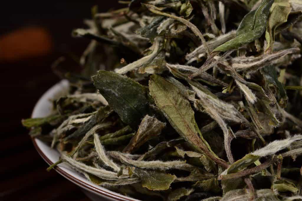 Bai Mu Dan white tea