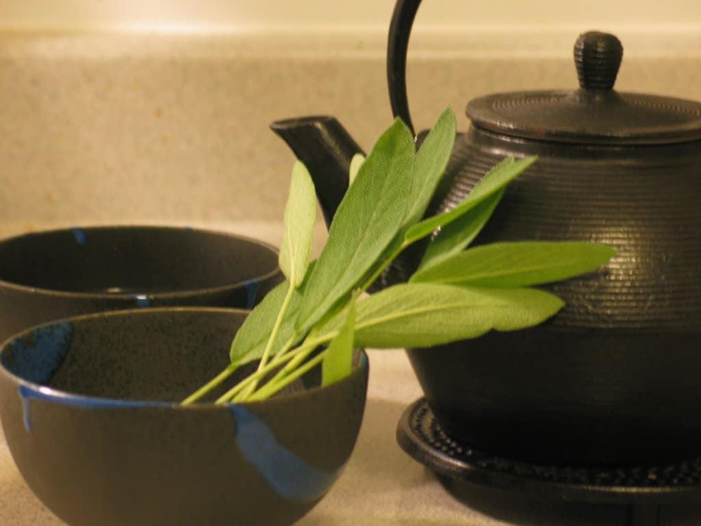 Recommended Sage Tea Brands