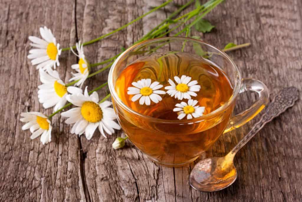 What is Chamomile Tea?