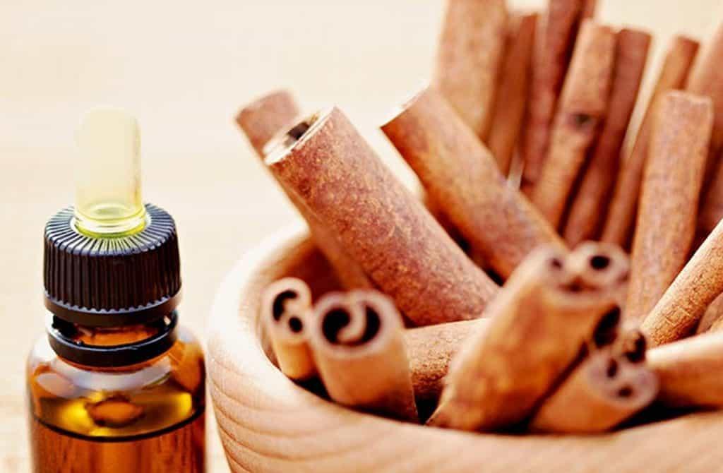 Cinnamon Stick Oil
