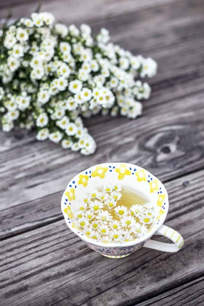 Chamomile Tea Side Effects