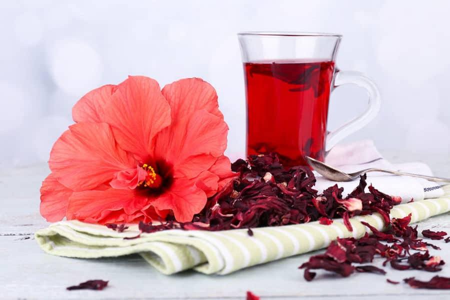 What Is Hibiscus Tea?