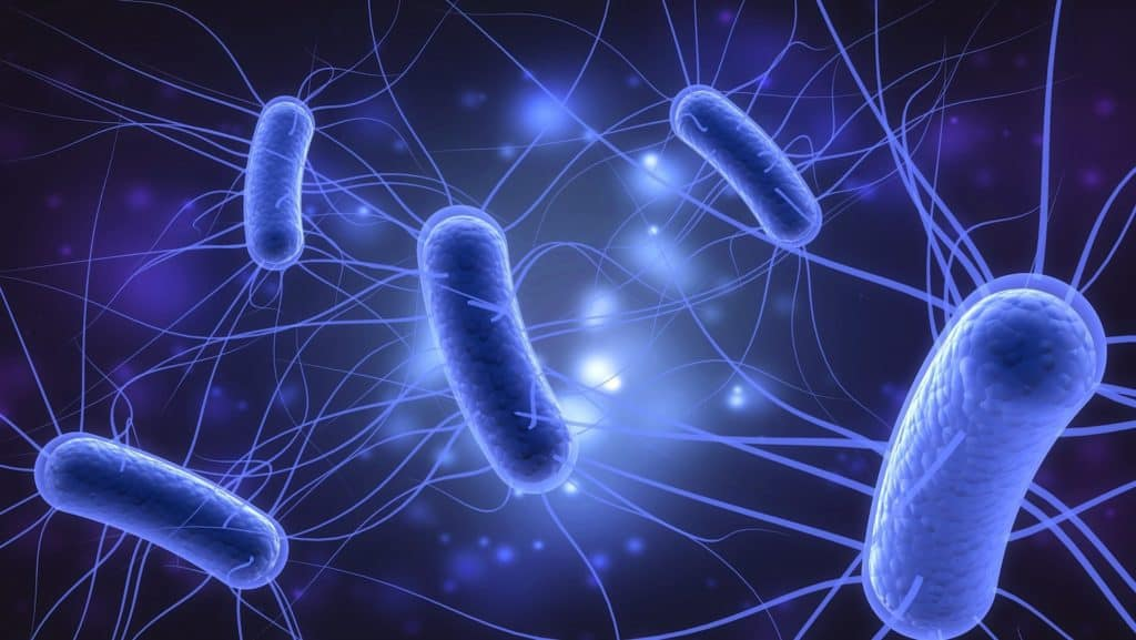Reducing Bacterial Infection