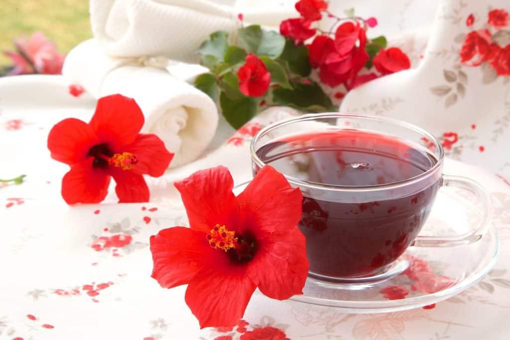 Hibiscus Tea Benefits for Beauty